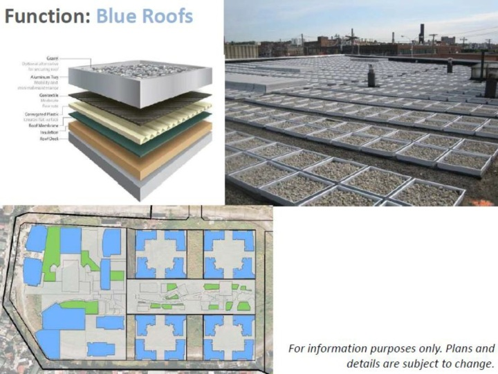 Blue Roofs